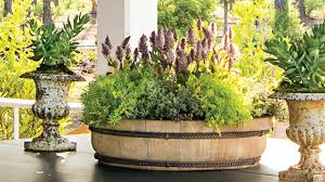 how to plant a simple moss container garden southern living