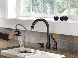 Delta Pull Out Kitchen Faucet Delta Faucet 978 Rb Dst Leland Single Handle Pull Down Kitchen