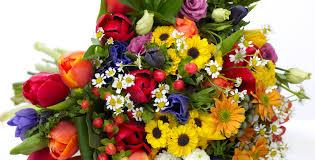 Florists T L C Florists Ltd Leigh Park Havant