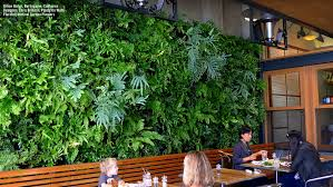 indoor wall garden on walls vertical garden systems aquaponic