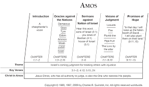 book of amos overview insight for living ministries