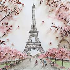 drawn eiffel tower cherry blossom pencil and in color drawn