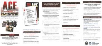 rocky mountain mirecc for veteran prevention mirecc coe