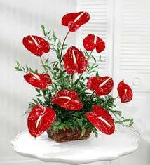 types of flower arrangements flower arranging videos flower arranging 101