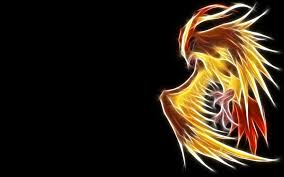 pidgeot car pokemon pidgeot black background wallpaper 1920x1200 8177