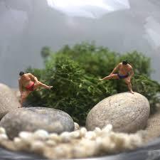 sumo mini terrarium kit by london garden trading