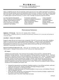 Staffing Recruiter Resume Vp Finance Cfo Early Stage Saas In New York Ny Resume Peter