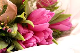 tulip nice green bouquet beautiful forever precious pink lovely
