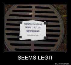 Funny Teenage Memes - now hiring teenage mutant ninja turtles funny pics memes