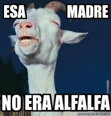 Alfalfa Meme - meme personalizado esa madre no era alfalfa 3742288