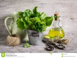 Countertop Herb Garden by Fresh Herb Garden In A Metal Bucket Olive Oil In Glass Bottle