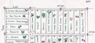 the home garden package green essentials