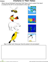 animal habitat drawing page worksheet education com