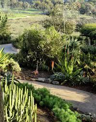 Balboa Park Botanical Gardens by Danger Garden The Desert Garden At Balboa Park