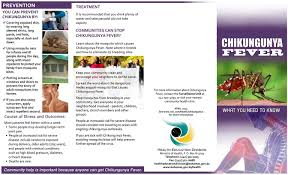 measures to minimize spread of chikungunya virus bahamas news