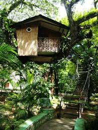 famous tree houses pasonanca park zamboanga philippines the most famous tree house