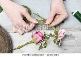 how to make wrist corsages wrist corsage stock images royalty free images vectors