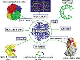integrating biological data through the genome human molecular