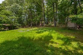 10009 green forest dr adelphi md 20783