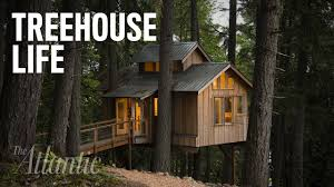 would you live in a treehouse youtube