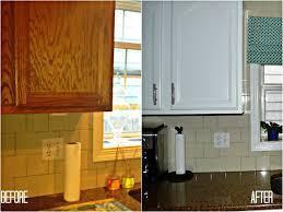 best brand kitchen cabinets kitchen fascinating diy painting kitchen cabinets ideas diy