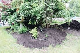 3 easy organic mulch options for a thriving garden