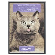 birthday card from the cat printable funny birthday cards black