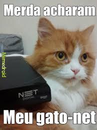 Meme Net - huehuehue gato net meme by armando mesquita memedroid