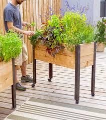 hochbeet balkon mobiles hochbeet auf rollen für terrasse und balkon projekt