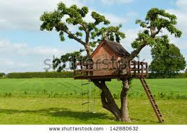 Tree House Backyard by Tree House For Kids Tree House This Would Be My Dream Tree House