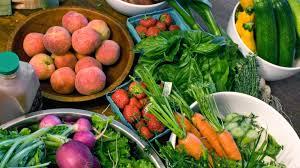 how to grow healthy garden plants angie u0027s list