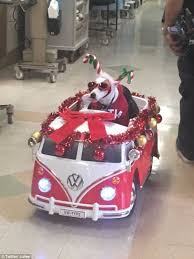 jack russell terrier drives around hospital in mini vw bus while