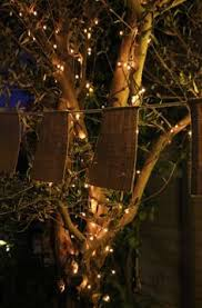 Hire Outdoor Lighting - country outdoor wedding inspiration in the gum trees bunting for