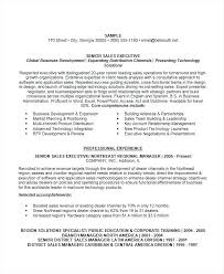 resume exles for sales sales resume exle dolphinsbills us