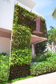 Interior Plant Wall Greenstreet Greenwalls U2013 Living Walls Greenwalls And Green Walls