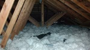 attic insulation integrated with pest control croach