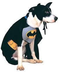 best batman halloween costume top 10 best halloween costumes for dogs 2017