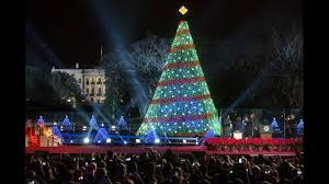 the trumps to take delivery of white house christmas tree early wcyb