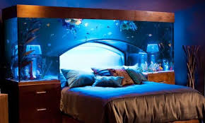 Bed Head Meaning The Aquarium Bed And Other Weirdly Luxurious Resting Places