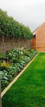 Privacy Garden Ideas Garden Bushes For Privacy Home Outdoor Decoration
