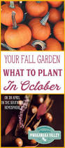 3022 best vegetables images on pinterest gardening tips veggie