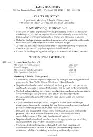 best solutions of sample resume product manager for download