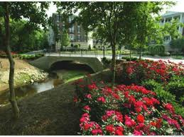 Raleigh Botanical Garden Gardens On Glenwood Raleigh Nc
