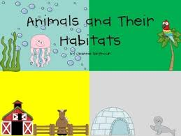 all worksheets animal habitats worksheets free printable