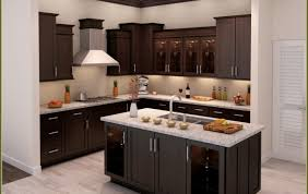 replace kitchen cabinet doors ikea kitchen kitchen cabinet doors magnificent kitchen cabinet doors