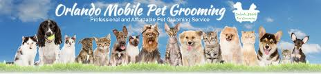 mobile pet grooming orlando service areas