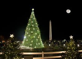 photos family takes photos of national christmas tree for 53