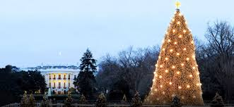 america u0027s best tree lighting ceremonies wheretraveler