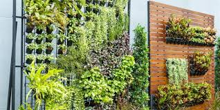 wonderful green vertical wall similiar vertical green wall system