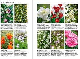 Scented Flowering Shrubs - 26 of the best scented plants gardens illustrated